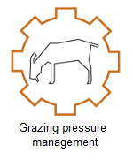 grazing pressure management