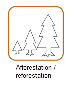 afforest_reforestation