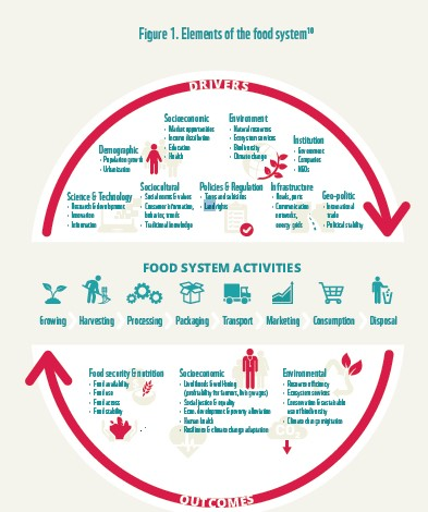 elements food systems
