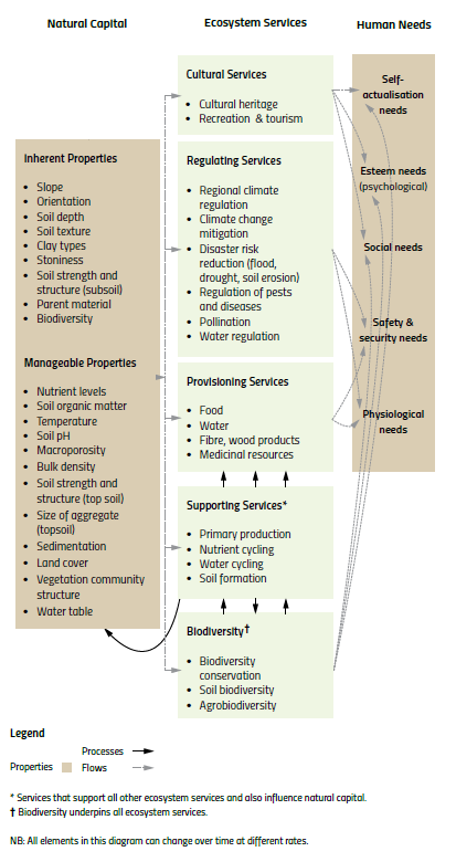 natural capital_ecosystem services