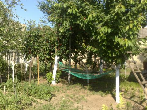 Submit your proposal for the Earth Innovation Projects.