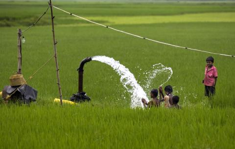 USAID wants to your Project.