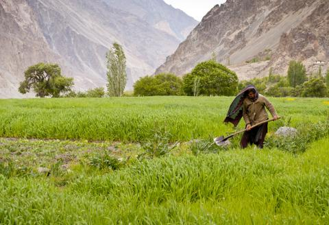 Tell a friend about the International Conference on Agricultural and Biological Science.