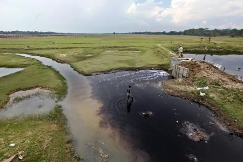 Get Grants for Adaptation Program.
