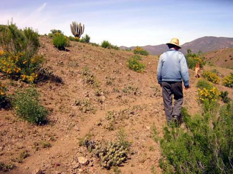 Tell a friend about the Global Landscape Forum New York 2019