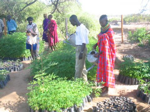 Are you an African then,get your fellowship done with the World Bank Group