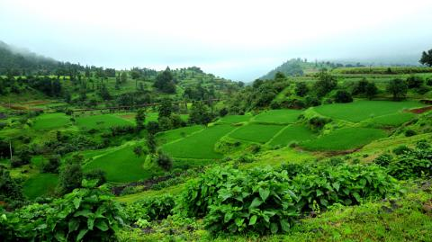 Save the date to attend the 7th International Conference on Sustainable Environment and Agriculture (ICSEA 2019).