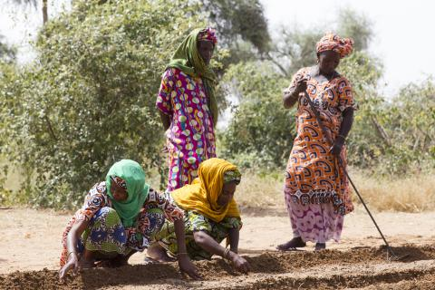 Webinar- Water and Climate Change: Women's Coping Strategies in West Africa