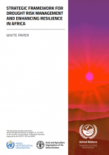 Strategic framework for drought risk management and enhancing resilience in Africa: white paper