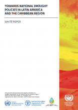 Towards national drought policies in Latin America and the Caribbean: white paper