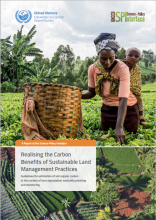 Realising the Carbon Benefits of Sustainable Land Management Practices Guidelines for estimation of soil organic carbon in the context of land degradation neutrality planning and monitoring