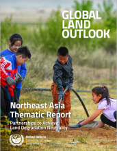 Northeast Asia Thematic Report
