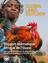West Africa Thematic Report