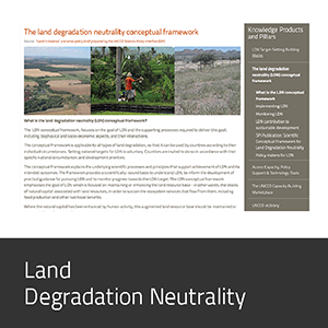Land Degradation Neutrality