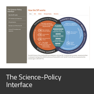 The Science-Policy Interface