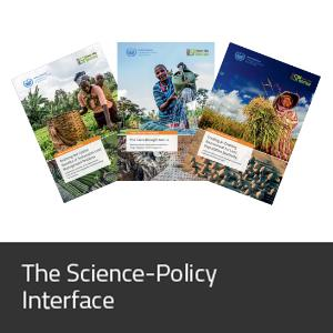 Science-Policy Interface
